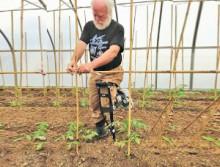 harold-garden-crutches-2